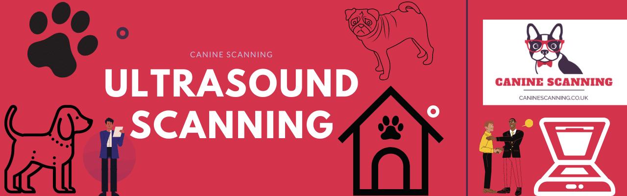 Book An Ultrasound Scan
